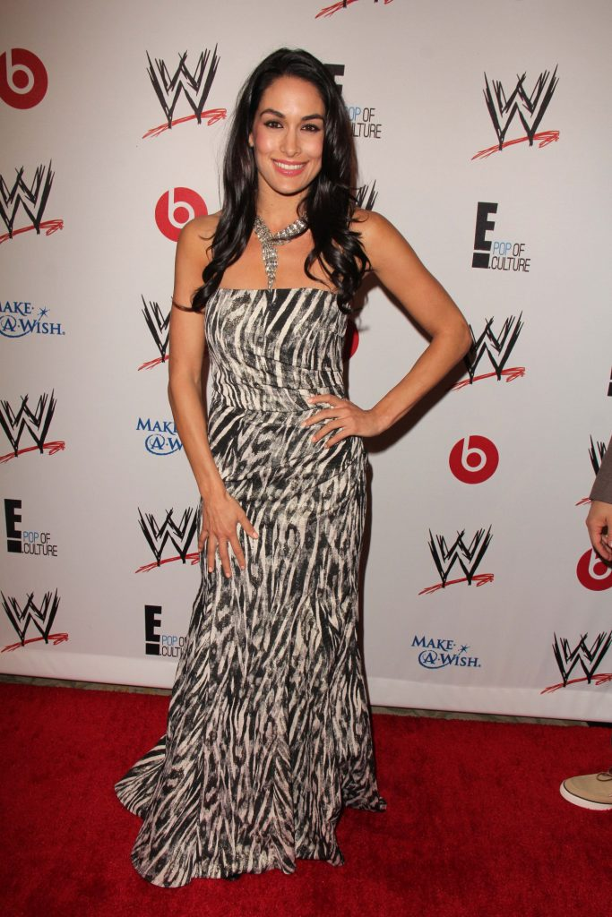 Brie Bella at Superstars for Hope honoring Make-A-Wish